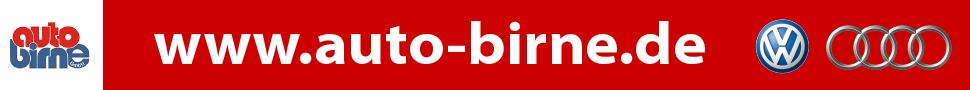 Auto Birne Top Banner 970 x 90